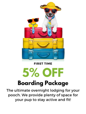 5% OFF BOARDING STAY